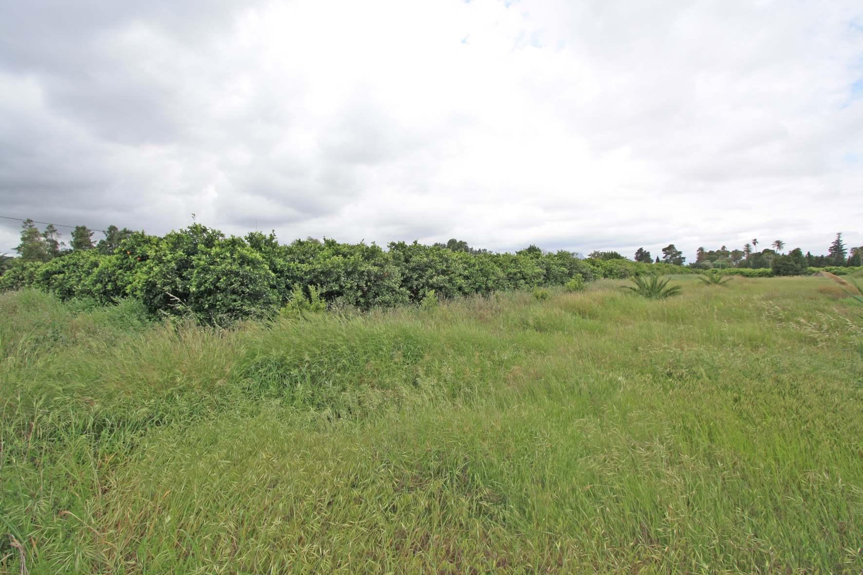 For Sale. Plot / Land in Denia
